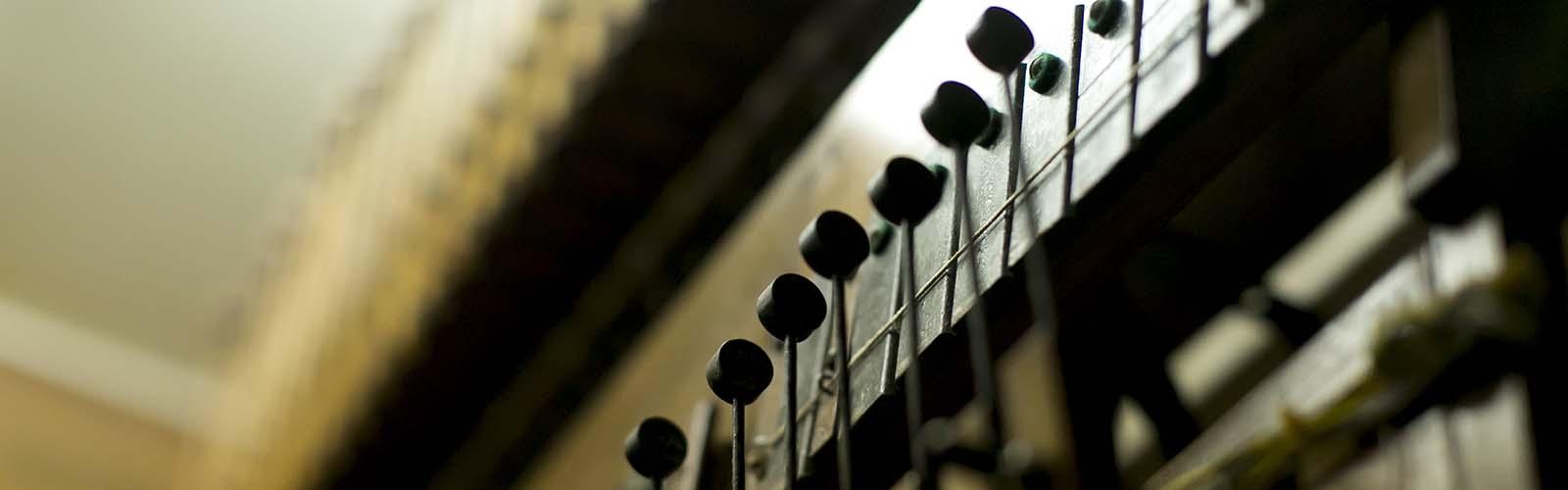 The Organ